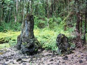 Lava Tree State Monument